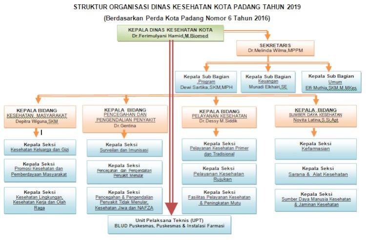 Struktur Organisasi Dinas Kesehatan Kota Padang